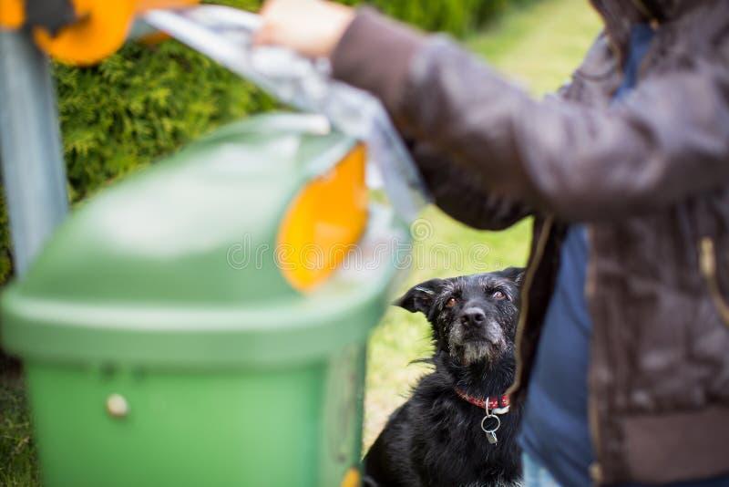 Μην αφήστε το σκυλί σας faul! στοκ φωτογραφία με δικαίωμα ελεύθερης χρήσης