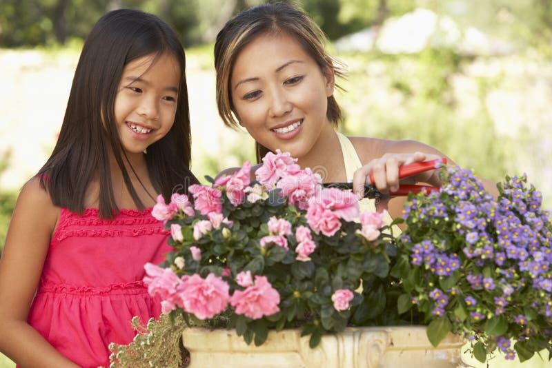 Μητέρα και κόρη που καλλιεργούν από κοινού στοκ φωτογραφία