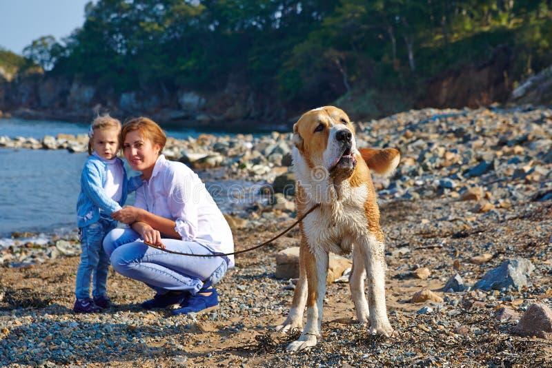 Μητέρα με τον περίπατο παιδιών και σκυλιών στοκ εικόνες