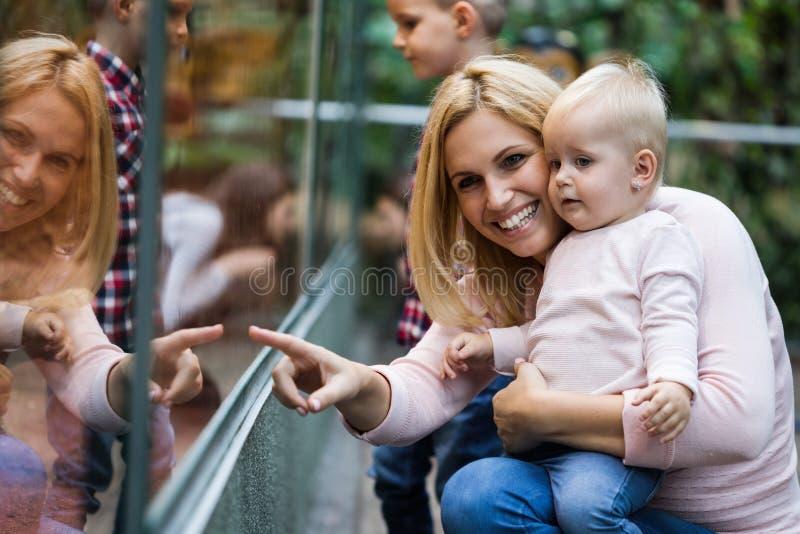 Μητέρα με τους γιους της που εξετάζουν τη χελώνα στο ζωολογικό κήπο στοκ εικόνα με δικαίωμα ελεύθερης χρήσης