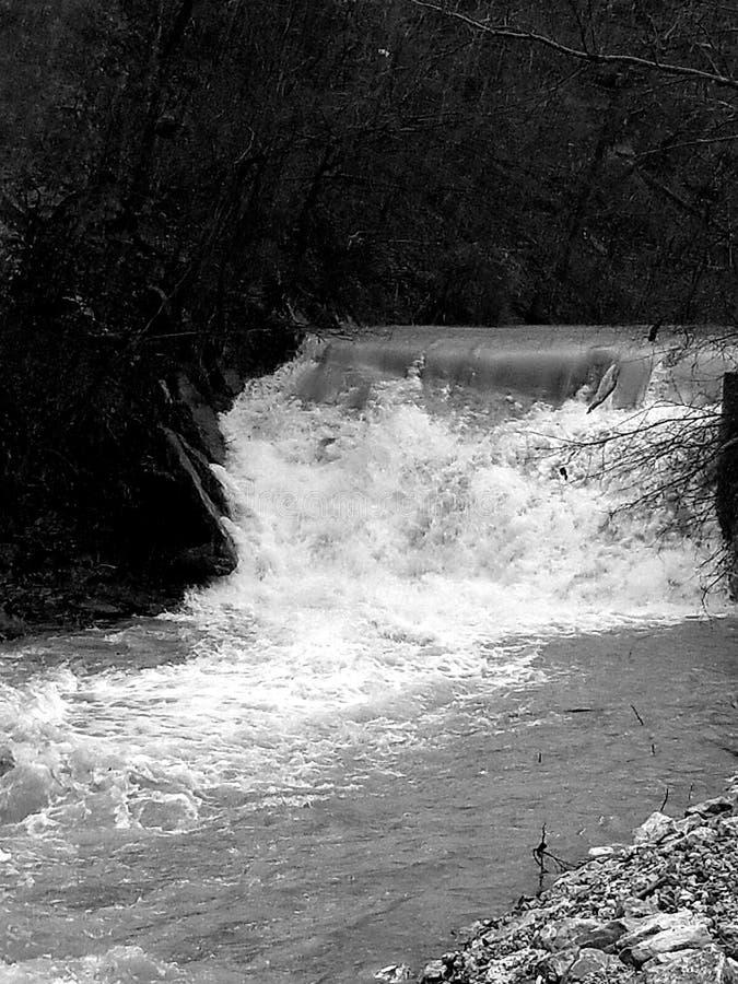 Μητέρα nature& x27 s λεπτότερο στοκ φωτογραφίες