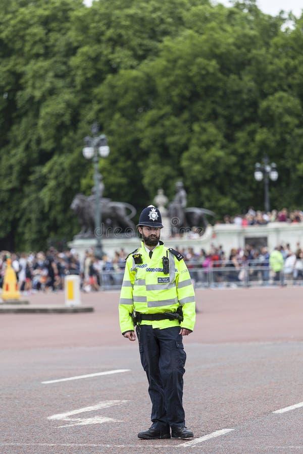 Μητροπολιτικοί αστυνομικός και τουρίστας που περιμένουν εθιμοτυπική αλλάζω των φρουρών του Λονδίνου, Λονδίνο, Ηνωμένο Βασίλειο στοκ εικόνα