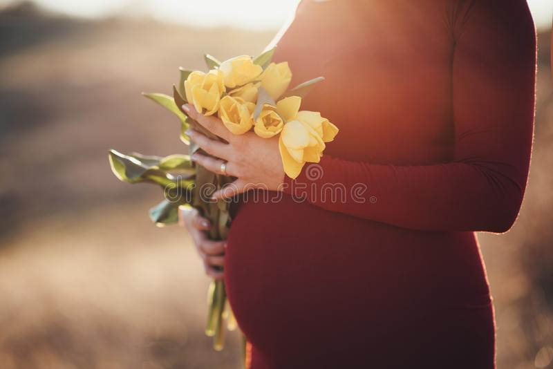 Μητρότητα και κίτρινες τουλίπες στοκ εικόνες