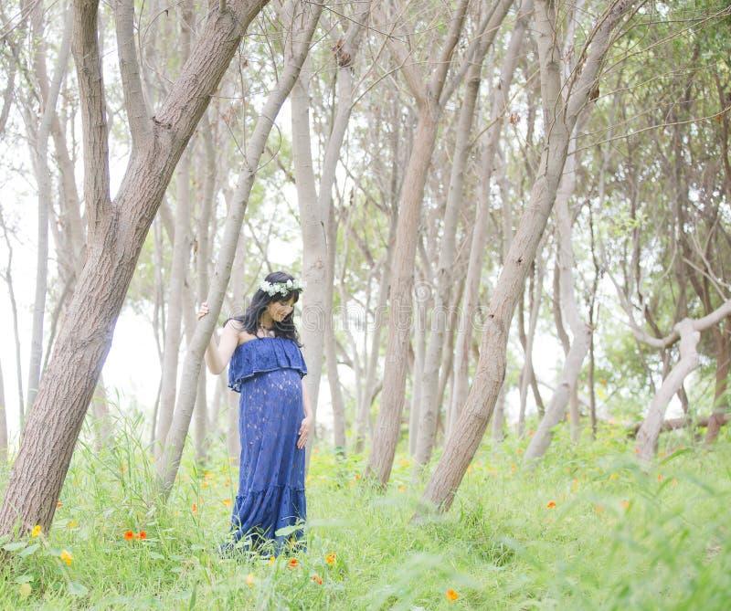 μητρότητα στοκ εικόνες