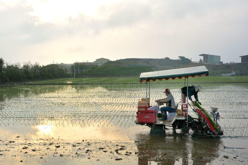 Μηχανή σποροφύτων ρυζιού μεταμόσχευσης στοκ εικόνες με δικαίωμα ελεύθερης χρήσης