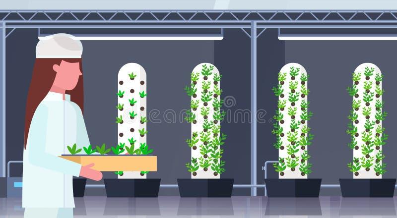 Μηχανικός γεωργίας γυναικών στην ομοιόμορφη σύγχρονη οργανική κάθετη αγροτική εσωτερική καλλιεργώντας βιομηχανία εγκαταστάσεων εκ διανυσματική απεικόνιση