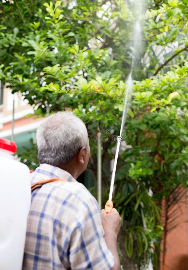 Μη αναγνωρισμένα ανώτερα ψεκάζοντας εντομοκτόνα ατόμων σε ένα δέντρο στοκ φωτογραφίες με δικαίωμα ελεύθερης χρήσης