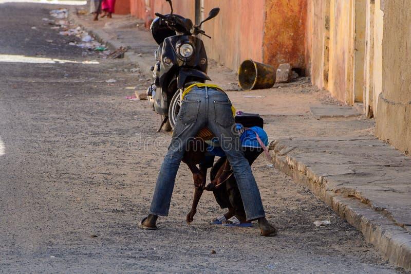 Μη αναγνωρισμένες σενεγαλέζικες κάμψεις ατόμων κάτω στην επιλογή κάτι επάνω μέσα στοκ φωτογραφία με δικαίωμα ελεύθερης χρήσης