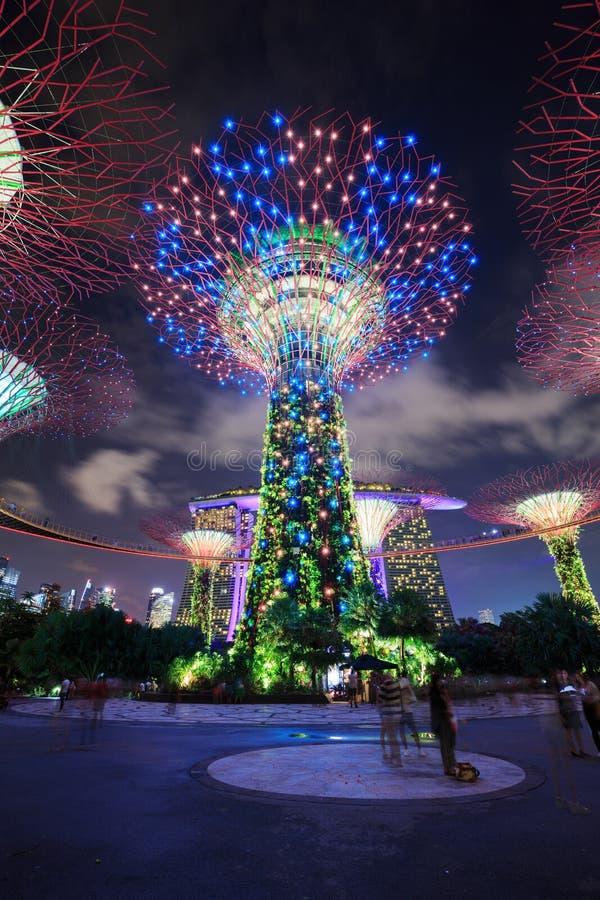 Μη αναγνωρισμένο επισκεμμένο τουρίστας φως των κήπων από τον κόλπο κοντά στοκ φωτογραφίες