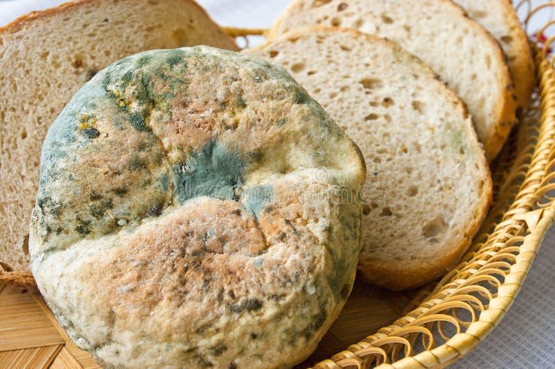 μη φαγώσιμος παλαιός τροφίμων στοκ εικόνες