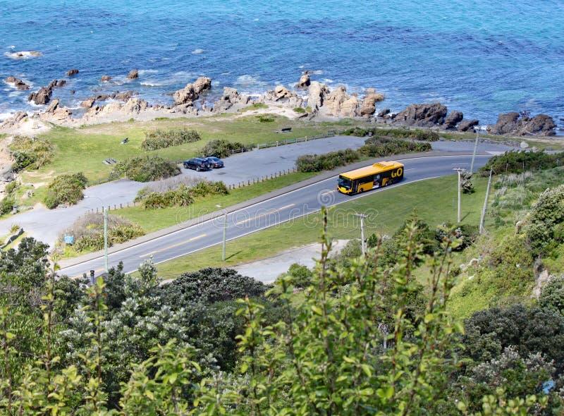 Μια άποψη από υψηλό ανωτέρω της τράπεζας βράχων του κόλπου Lyall, Ουέλλινγκτον, Νέα Ζηλανδία στοκ εικόνες με δικαίωμα ελεύθερης χρήσης