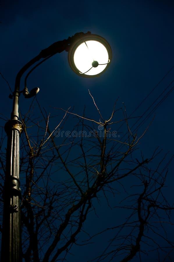 Μια άποψη νύχτας του φαναριού και του δέντρου που τοποθετούνται σε Bolshaya Konushennaya ST στην Άγιος-Πετρούπολη, Ρωσία στοκ φωτογραφία με δικαίωμα ελεύθερης χρήσης