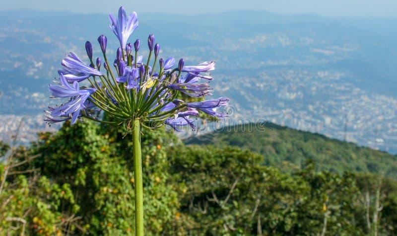 Μια άποψη πέρα από την πόλη του Καράκας στοκ εικόνα