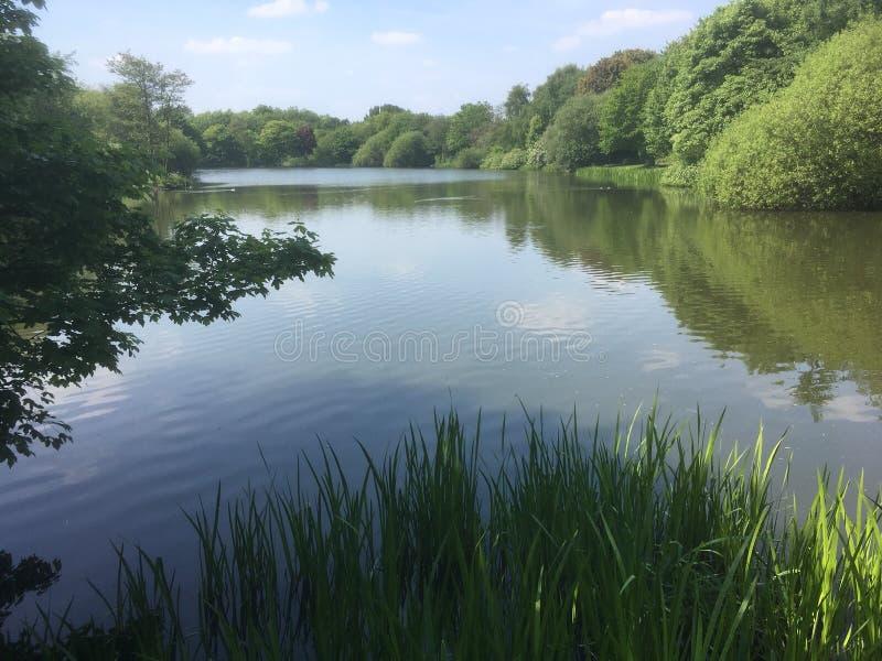 Μια άποψη της λίμνης στοκ φωτογραφία με δικαίωμα ελεύθερης χρήσης