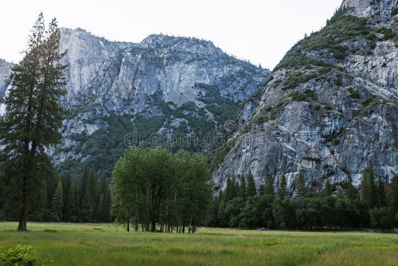 Μια άποψη του μεγαλοπρεπούς Yosemite στοκ εικόνες