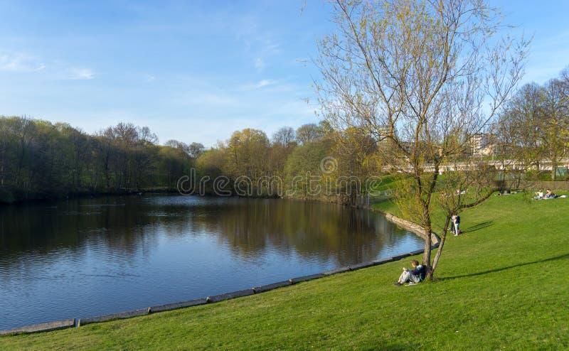 Μια ήρεμη λίμνη το καλοκαίρι του πάρκου Frogner, Όσλο, Νορβηγία στοκ εικόνες