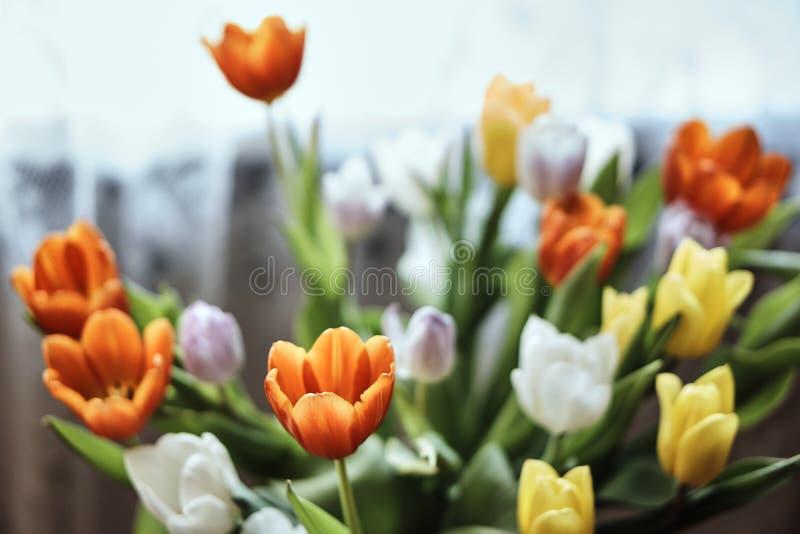 Μια ανθοδέσμη των τουλιπών λουλουδιών στοκ φωτογραφίες