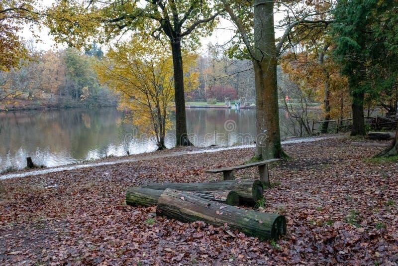 Μια αργοπορημένη φθινοπωρινή ημέρα στο Buchan Park Crawley Ηνωμένο Βασίλειο στοκ εικόνες