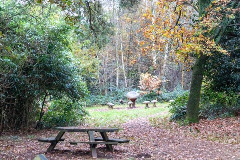 Μια αργοπορημένη φθινοπωρινή ημέρα στο Buchan Park Crawley Ηνωμένο Βασίλειο στοκ φωτογραφίες με δικαίωμα ελεύθερης χρήσης