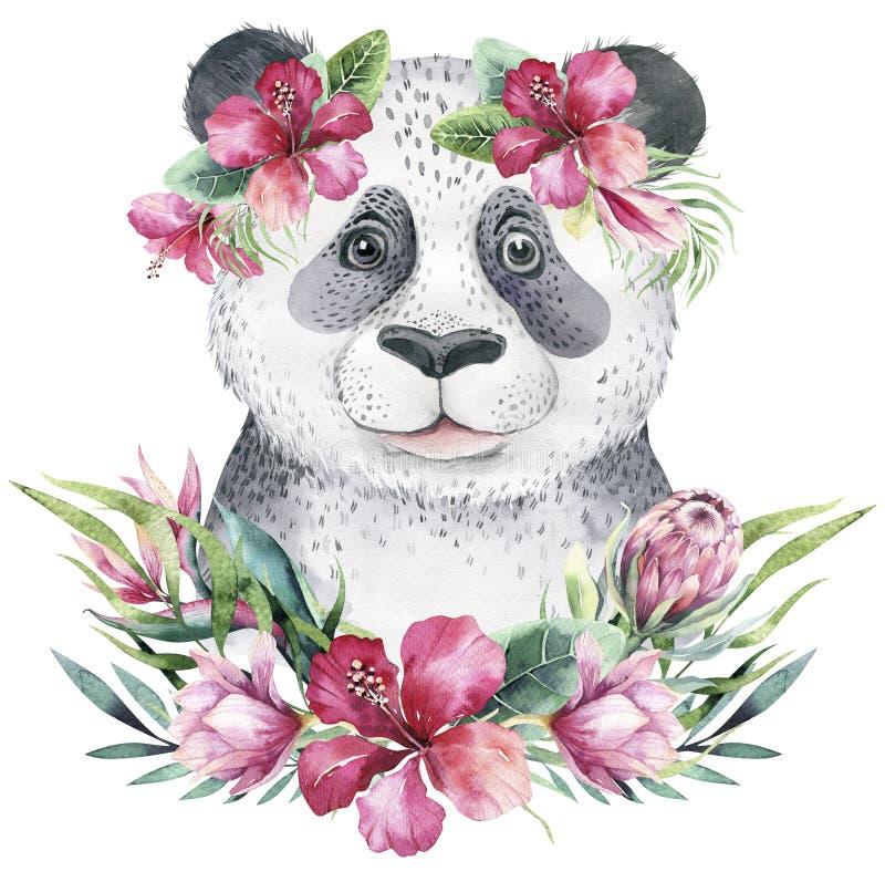 Μια αφίσα με ένα panda μωρών Τροπική ζωική απεικόνιση panda κινούμενων σχεδίων Watercolor Εξωτική θερινή τυπωμένη ύλη ζουγκλών απεικόνιση αποθεμάτων