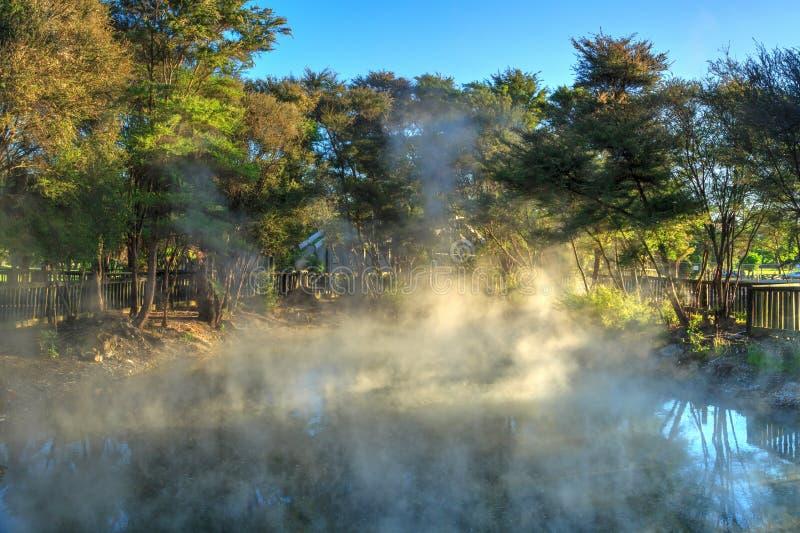 Μια βράζοντας στον ατμό γεωθερμική λίμνη σε ένα πάρκο σε Rotorua, Νέα Ζηλανδία στοκ εικόνες με δικαίωμα ελεύθερης χρήσης