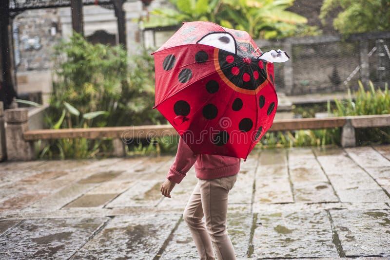 Μια βροχερή ημέρα, ένα μικρό κορίτσι με μια κόκκινη ομπρέλα κάνθαρος-ύφους είναι στο φυσικό σημείο στοκ εικόνες