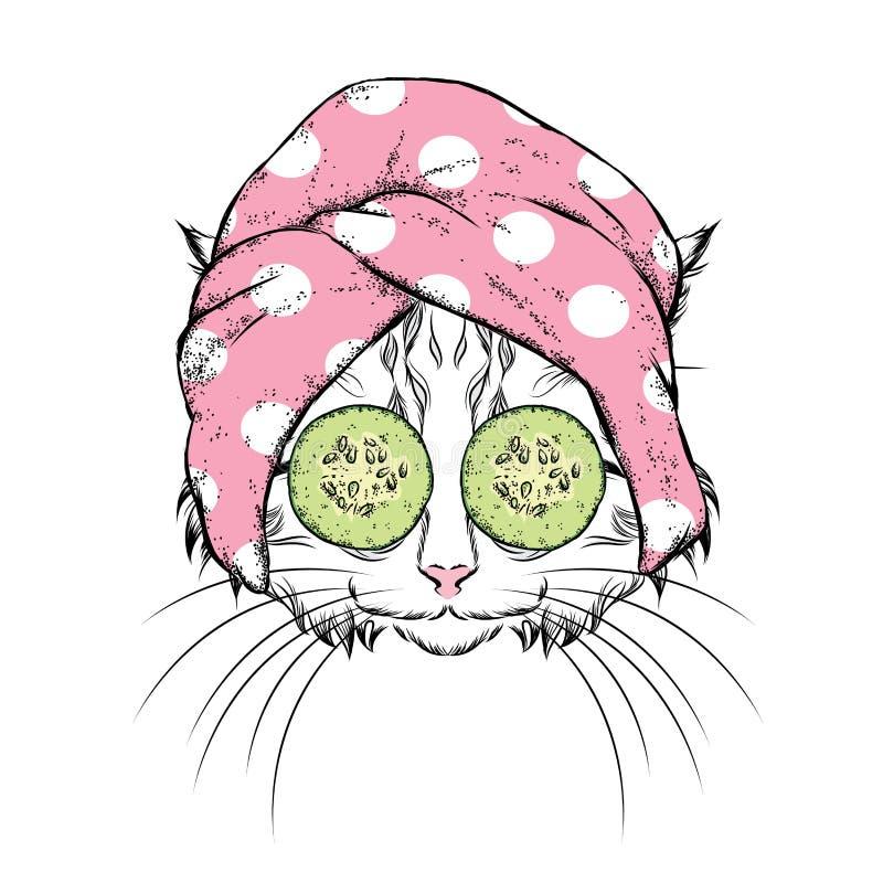 Μια γάτα σε μια πετσέτα και με το αγγούρι στο πρόσωπό του επίσης corel σύρετε το διάνυσμα απεικόνισης Επεξεργασίες ομορφιάς και S απεικόνιση αποθεμάτων