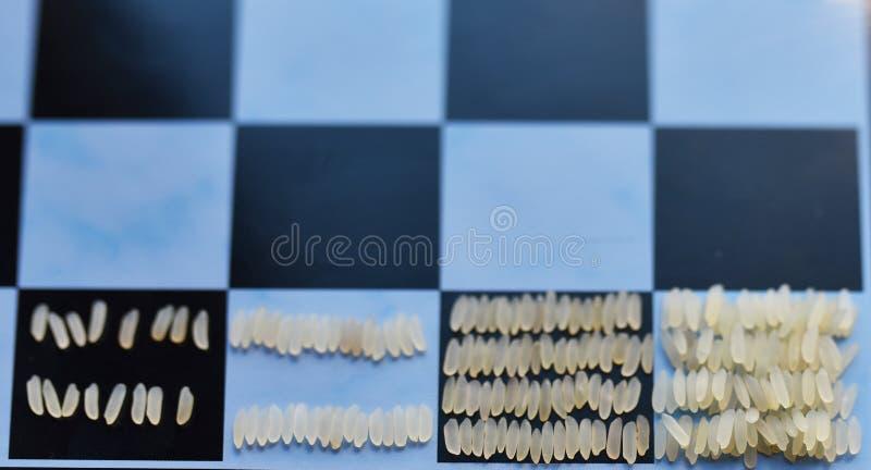 Μια γεωμετρική πρόοδος του ρυζιού σε έναν πίνακα σκακιού στοκ φωτογραφία