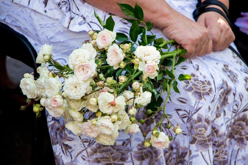 Μια γυναίκα κρατά μια ανθοδέσμη των άσπρων τριαντάφυλλων στο hands_ της στοκ φωτογραφίες με δικαίωμα ελεύθερης χρήσης