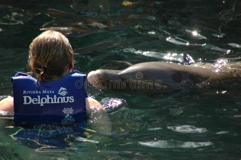 Μια γυναίκα με ένα δελφίνι στο Μεξικό στοκ φωτογραφίες