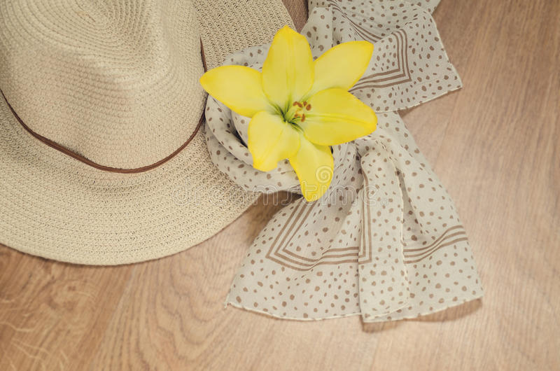 Μια γυναίκα πηγαίνει στις διακοπές ή σε ένα ταξίδι - ένα καπέλο και ένα ελαφρύ μαντίλι με τα σημεία Πόλκα βρίσκονται σε ένα ξύλιν στοκ εικόνες