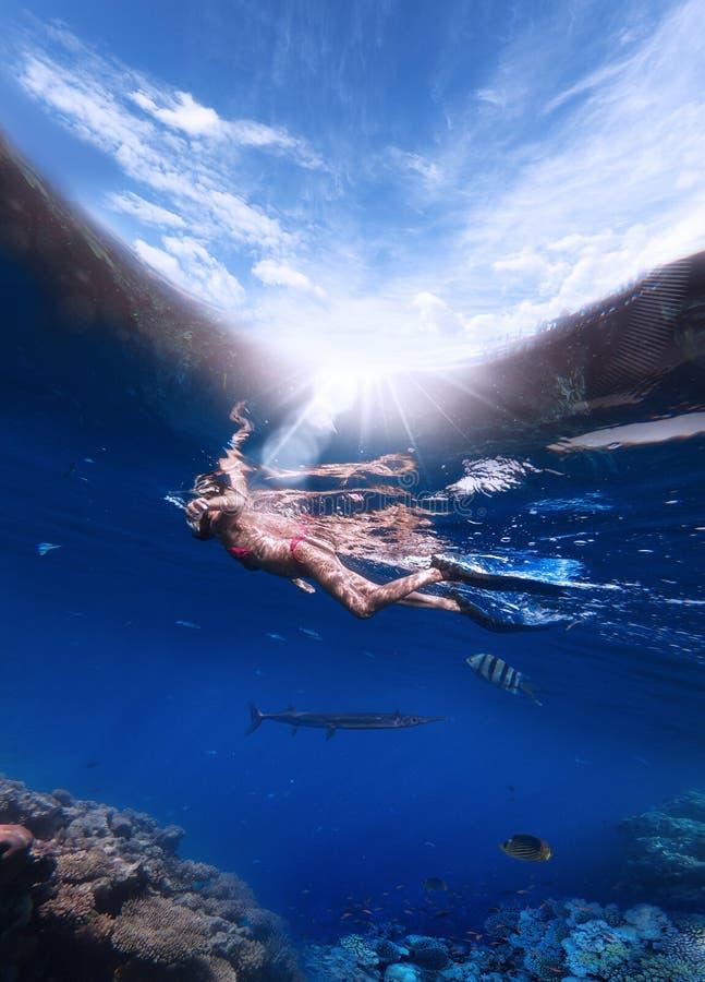 Μια γυναίκα σε μια μάσκα για την κολύμβηση με αναπνευστήρα και στα βατραχοπέδιλα βουτά στη Ερυθρά Θάλασσα για να εξετάσει τα κορά στοκ φωτογραφίες με δικαίωμα ελεύθερης χρήσης