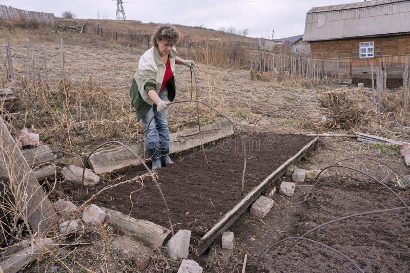 Μια γυναίκα τοποθετεί ένα θερμοκήπιο σε μια κορυφογραμμή σε έναν φυτικό κήπο, ενάντια στο σκηνικό ενός του χωριού σπιτιού στοκ φωτογραφία