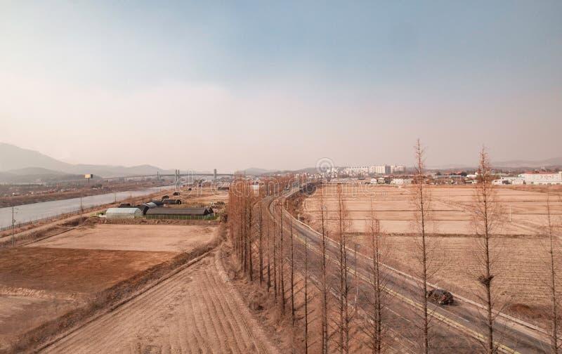 Μια εναέρια άποψη του τομέα ορυζώνα στην Κορέα στοκ φωτογραφία