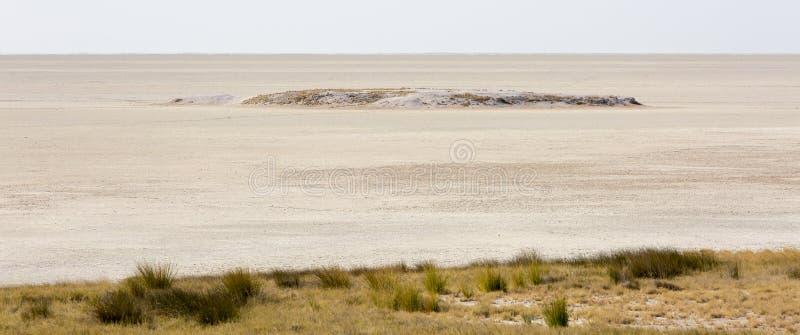 Μια ευρύς-καλλιεργημένη άποψη τεράστιου αλατισμένου παν του κεντρικού στην επιφύλαξη άγριας φύσης Etosha στη Ναμίμπια, στο τέλος  στοκ εικόνα με δικαίωμα ελεύθερης χρήσης