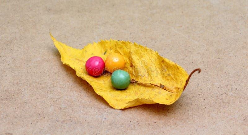 Μια ζωηρόχρωμη κατάταξη του λαμπρού κύκλου gumballs στοκ φωτογραφίες με δικαίωμα ελεύθερης χρήσης