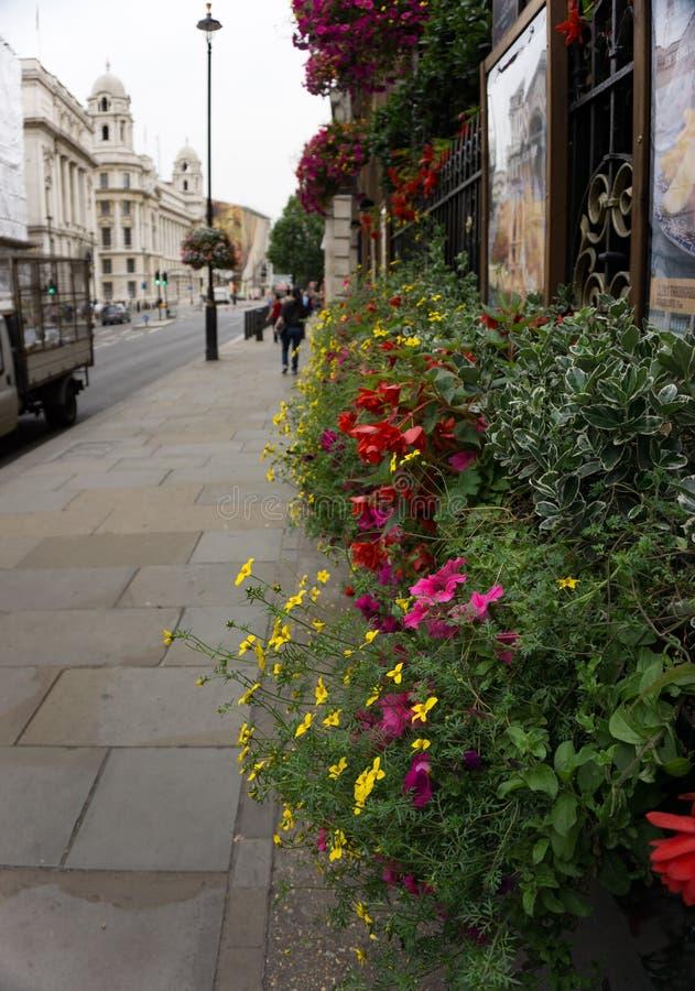 Μια ζωηρόχρωμη floral επίδειξη στην οδό στο Γκρήνουιτς, Λονδίνο, Αγγλία στοκ φωτογραφία με δικαίωμα ελεύθερης χρήσης
