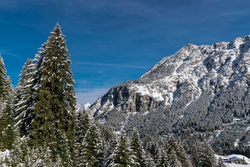 Μια ηλιόλουστη ημέρα στα βουνά στοκ φωτογραφία με δικαίωμα ελεύθερης χρήσης