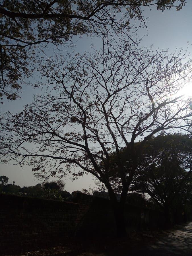 Μια ηλιόλουστη ημέρα στοκ φωτογραφία με δικαίωμα ελεύθερης χρήσης