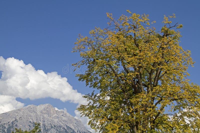Μια ημέρα φθινοπώρου σε Mieming στοκ φωτογραφία