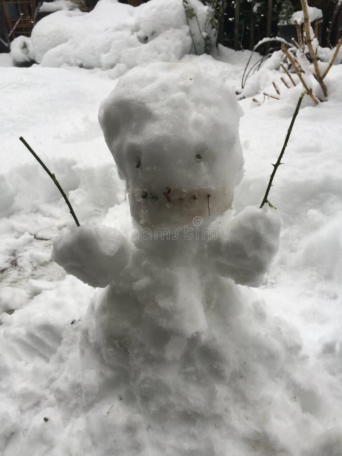 Μια ημέρα χιονιού στοκ εικόνα με δικαίωμα ελεύθερης χρήσης
