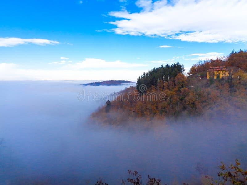 Μια θάλασσα της ομίχλης με τα δέντρα στοκ εικόνες