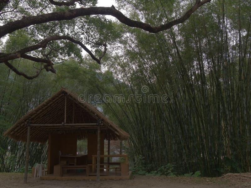 Μια καλύβα στο δάσος μπαμπού στοκ φωτογραφίες με δικαίωμα ελεύθερης χρήσης