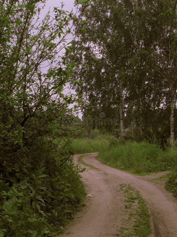 Μια κιτρινωπή σκονισμένη εθνική οδός με δύο kaleas που τεντώνουν στην απόσταση με μια κάμψη στοκ εικόνες