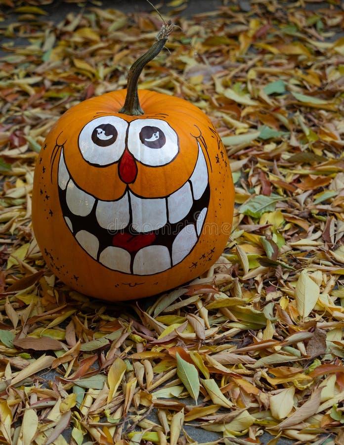 Μια κολοκύθα χαμόγελου αποκριές που περιβάλλεται ζωγραφισμένη στο χέρι από το ξηρό LE στοκ φωτογραφία με δικαίωμα ελεύθερης χρήσης