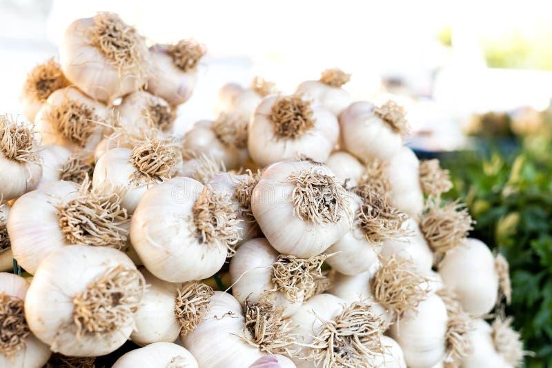 Μια μεγάλη δέσμη του σκόρδου στην αγορά στοκ φωτογραφία με δικαίωμα ελεύθερης χρήσης