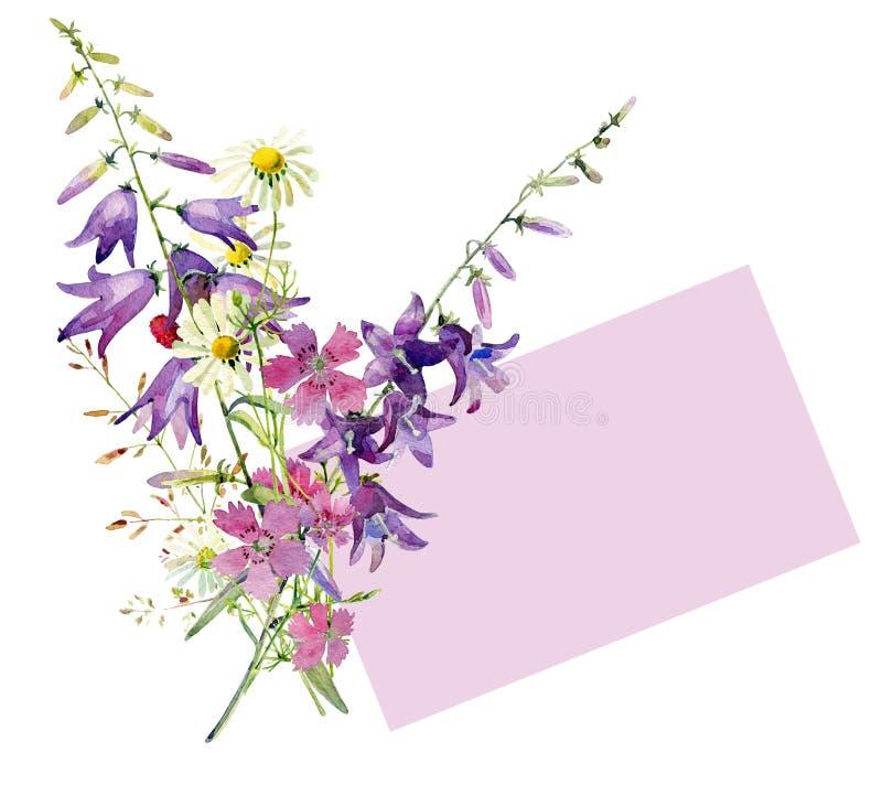 Μια μικρή ανθοδέσμη του άγριου watercolor ανθίζει, κουδούνι, γαρίφαλο, chamomile απεικόνιση αποθεμάτων