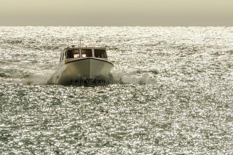 Μια μικρή βάρκα επιταχύνει μέσω του αστράφτοντας ωκεάνιου νερού στοκ εικόνες με δικαίωμα ελεύθερης χρήσης