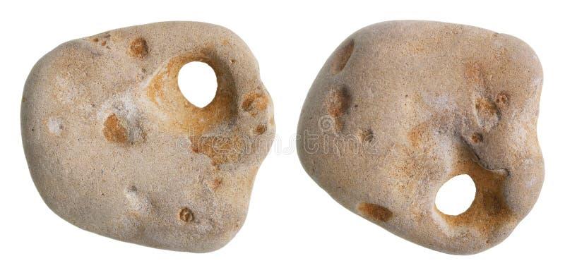 Μια μικρή πέτρα θάλασσας με μια τρύπα καλείται Θεό κοτόπουλου και φέρνει το γ στοκ εικόνες με δικαίωμα ελεύθερης χρήσης