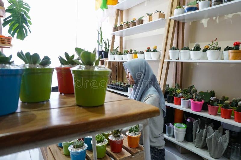 Μια μουσουλμανική επιχειρηματίας πωλεί τις succulent εγκαταστάσεις στο διαδίκτυο Διοργανώνει ένα καθαρό και άσπρο εργαστήριο Υπάρ στοκ εικόνες με δικαίωμα ελεύθερης χρήσης